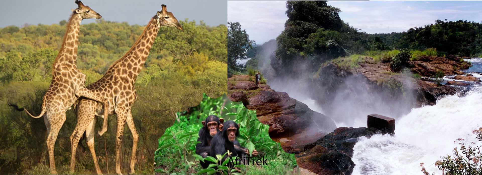 4 Days Murchison falls Wildlife Safari